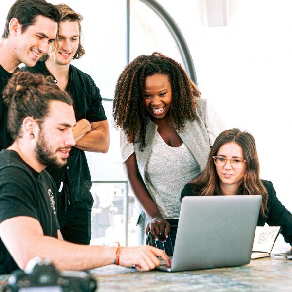 startup doivent se structurer